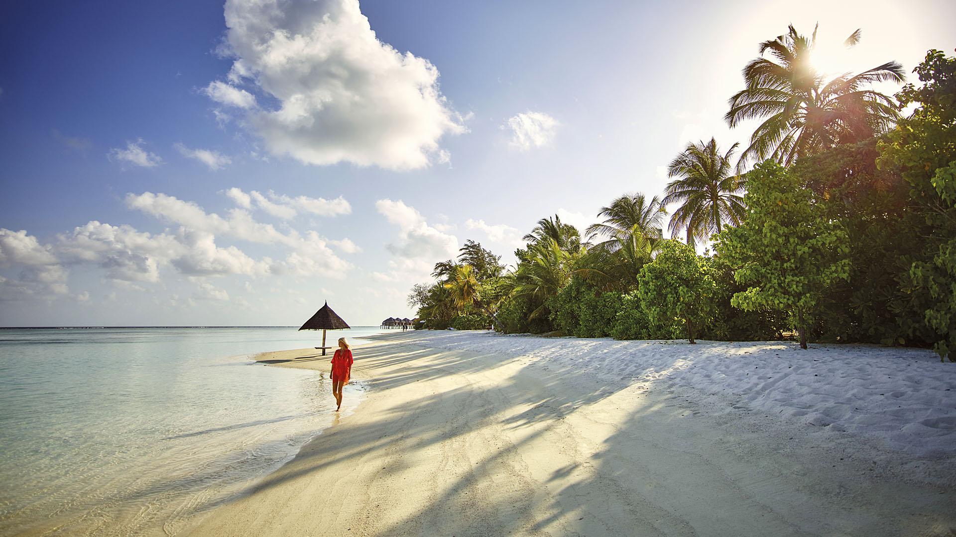 Ari Atoll, Maldives  № 1466126 без смс